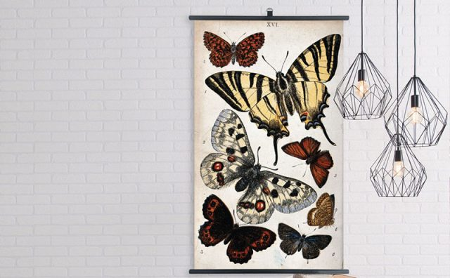 Jay-JA023x2-Biologica-Butterflies-Scroll-Lifestyle-EDITTED.jpg