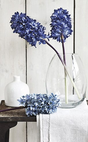 Dark blue hyacinth stems, £15 each, Neptune.