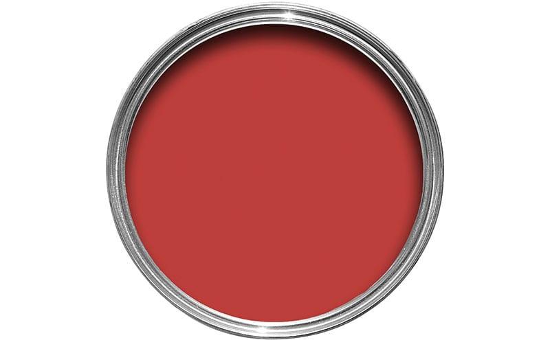 Ladybug, £9 for 2.5L, Colours at B&Q