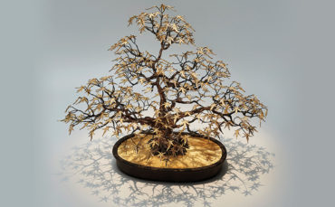 Avarice: Pierre Salagnac's Magic Money Tree (£69,363)