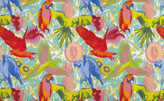 bird_wallpaper_3b.jpg