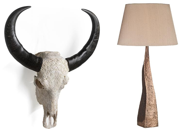 Ox skull and lamp