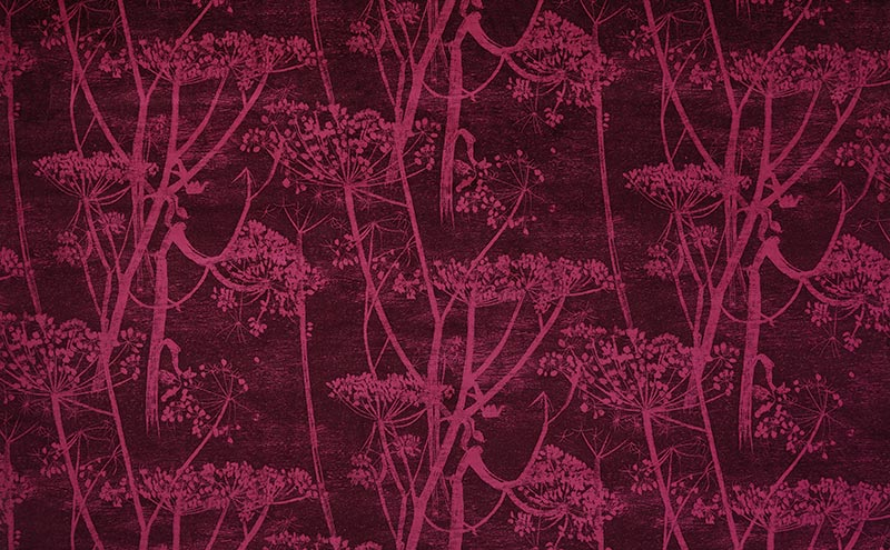 Cow Parsley velvet F111/5017, £145 per metre, Cole and Son