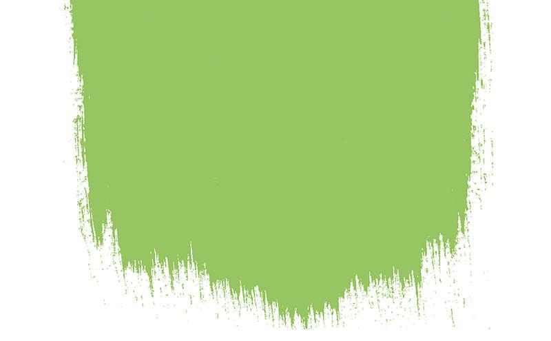 Lime Tree 96, £45 for 2.5l perfect matt emulsion, Designers Guild