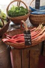 new-season rhubarb