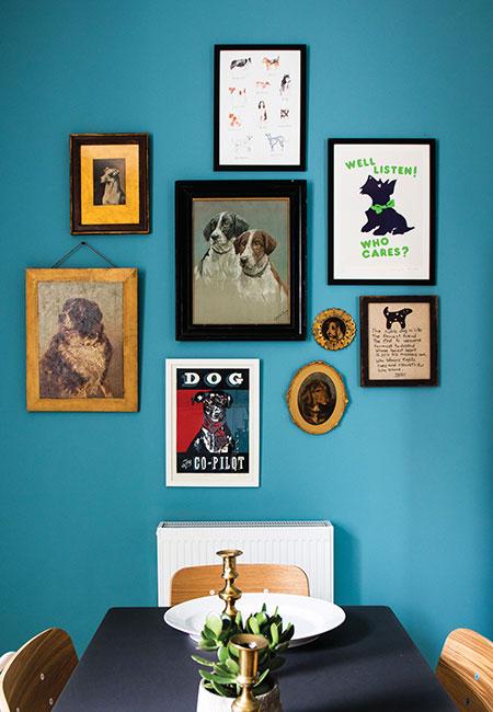 framed-dog-pictures-at-Glen-Dye