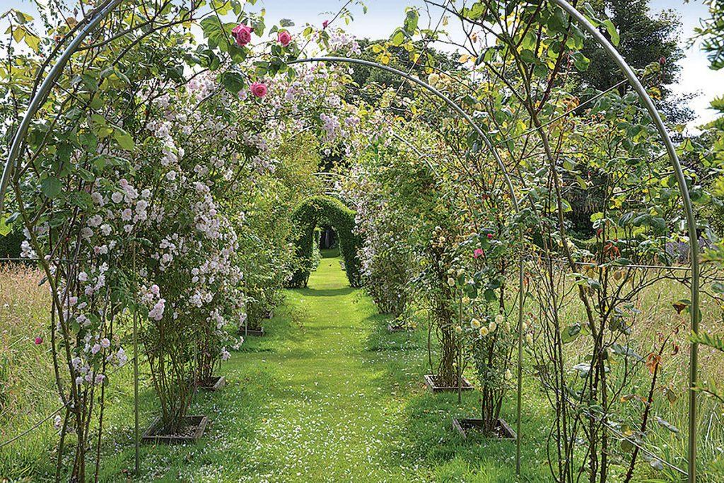 floral-archway-in-garden
