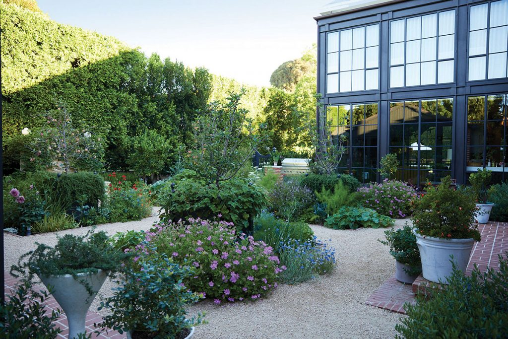 green-garden-with-lots-of-plants