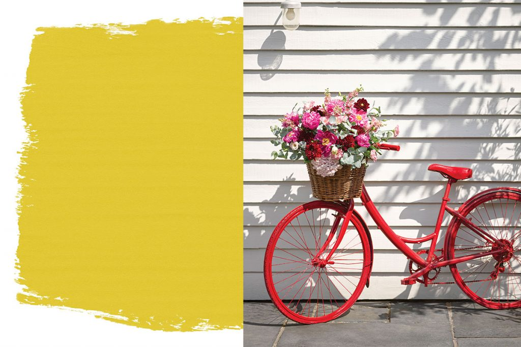 Annie-sloan-paint-and-red-bike