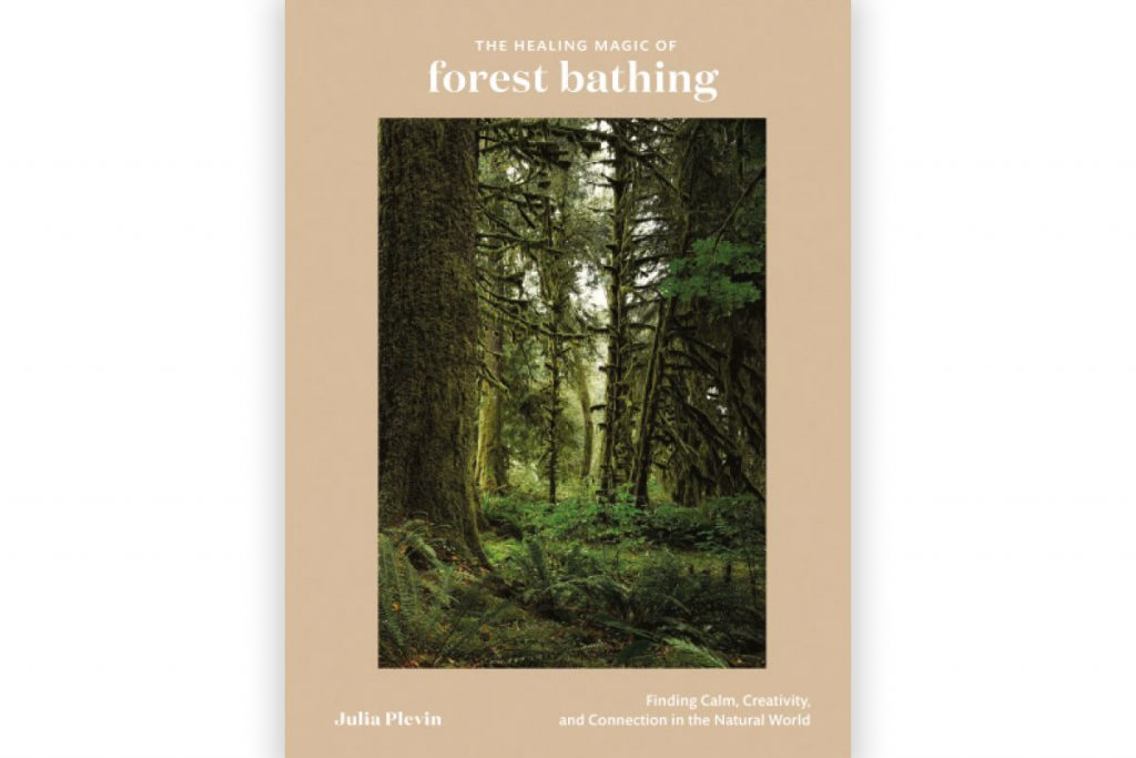 healing-magic-of-forest-bathing-