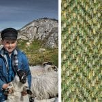 boy-with-sheep-and-harris-tweed-sample