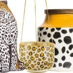 leopard-cushion-plant-pot-and-jar