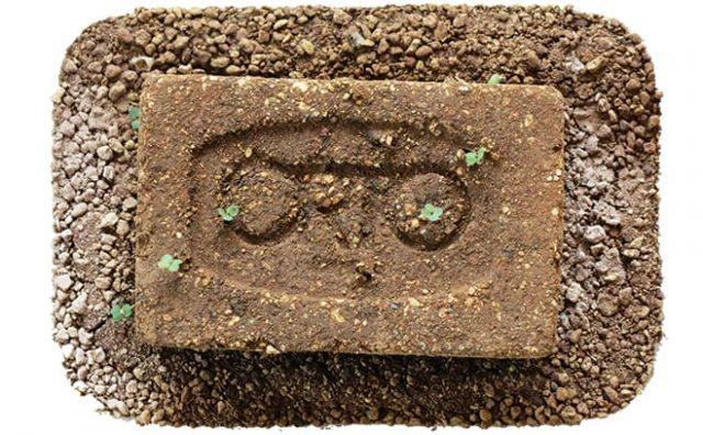 Orto-brick.jpg