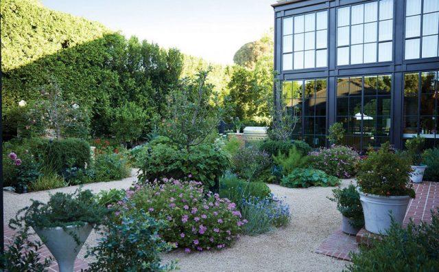 green-garden-with-lots-of-plants.jpg