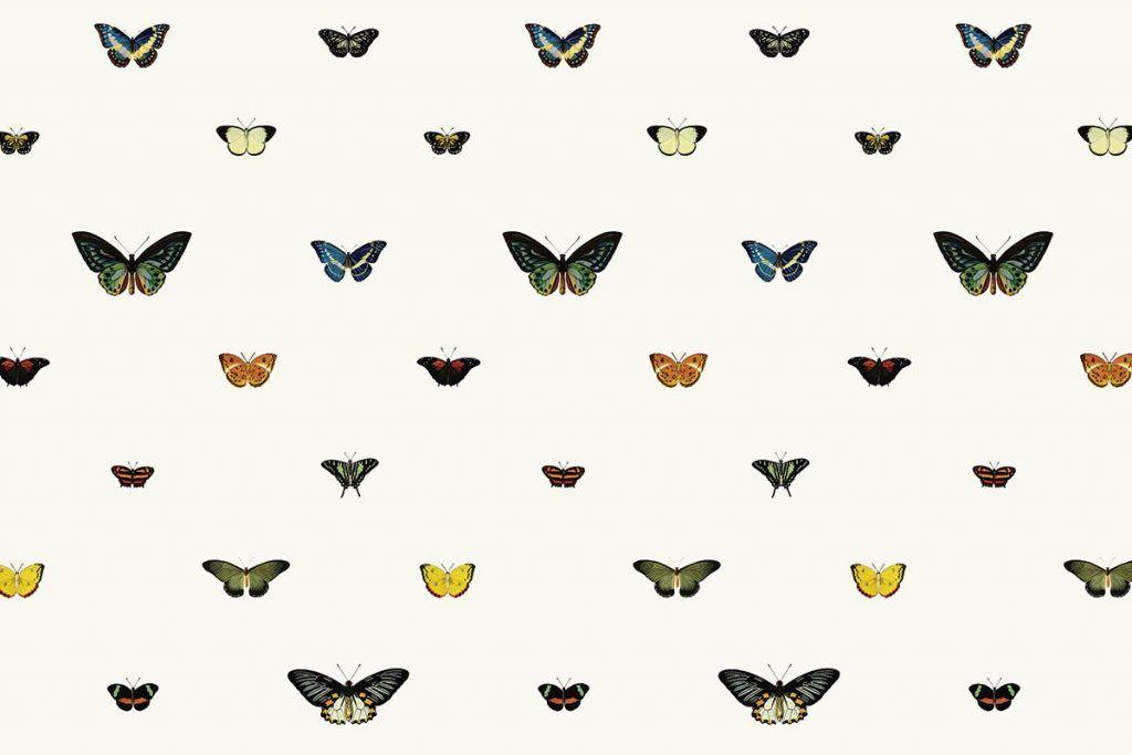 muralswallpaper-Suzy-Swatch.jpg